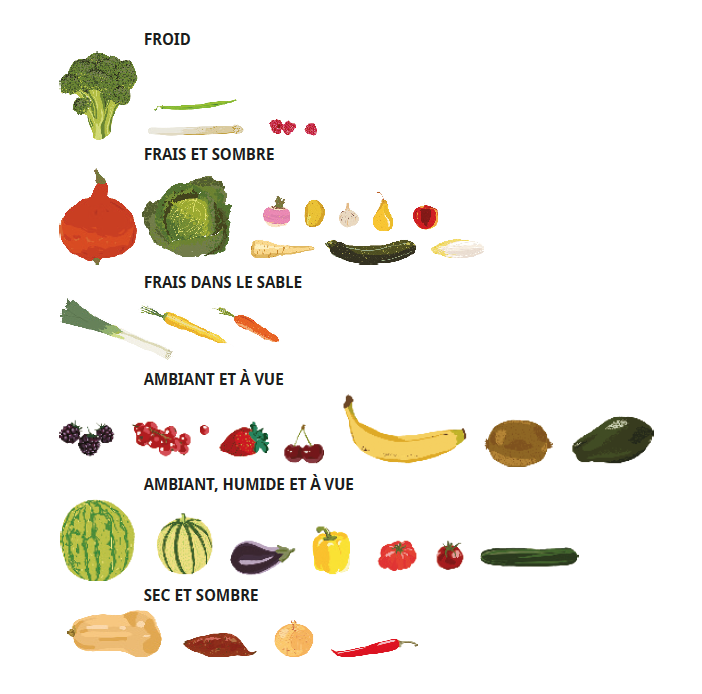 Conservation des fruits et l gumes Capture d e cran 2017-12-04 a 13.54.07.png